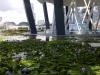 singapuro-botanikos-sodas-01
