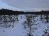 varnikai-ziema-060