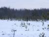 varnikai-ziema-069