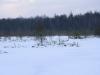 varnikai-ziema-071