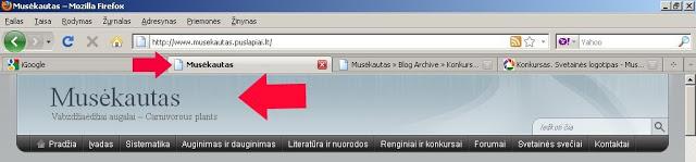Musekautas – Mozilla Firefox 2011.06.25 213129