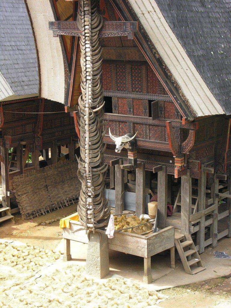 Tongkonan namas netori Tana Toraja, centriniame Sulavesyje