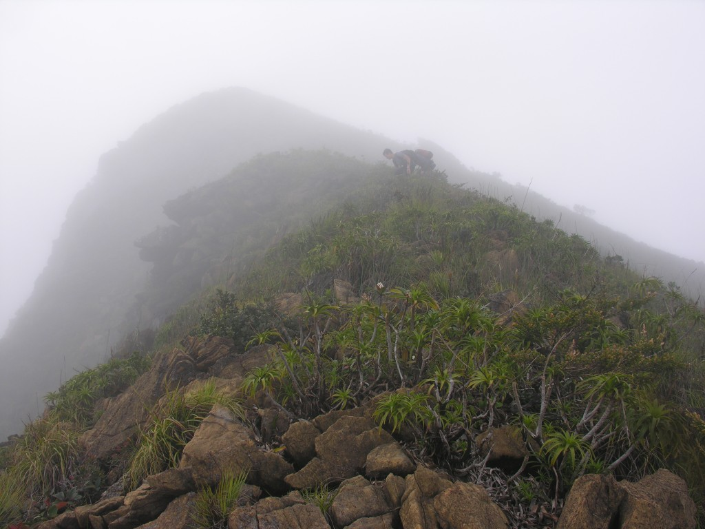 The summit of Mount Victoria