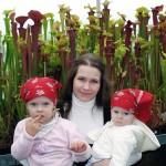 Mano gėlės