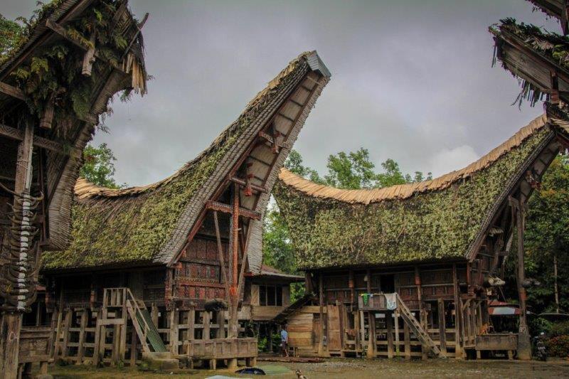 Sulawesi (2)