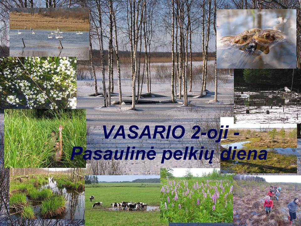 varniai - ppd2016