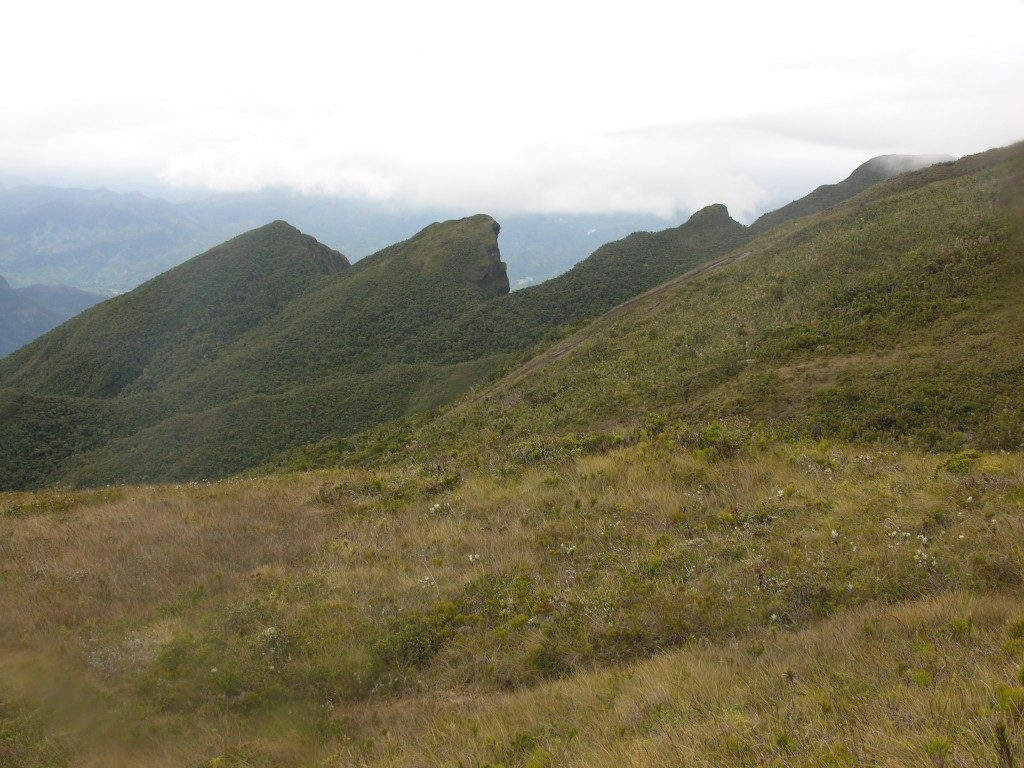 Marojejy kalno viršūnė
