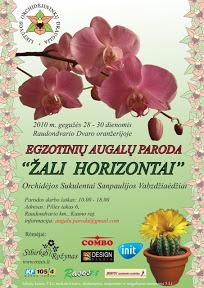 horizontai2010