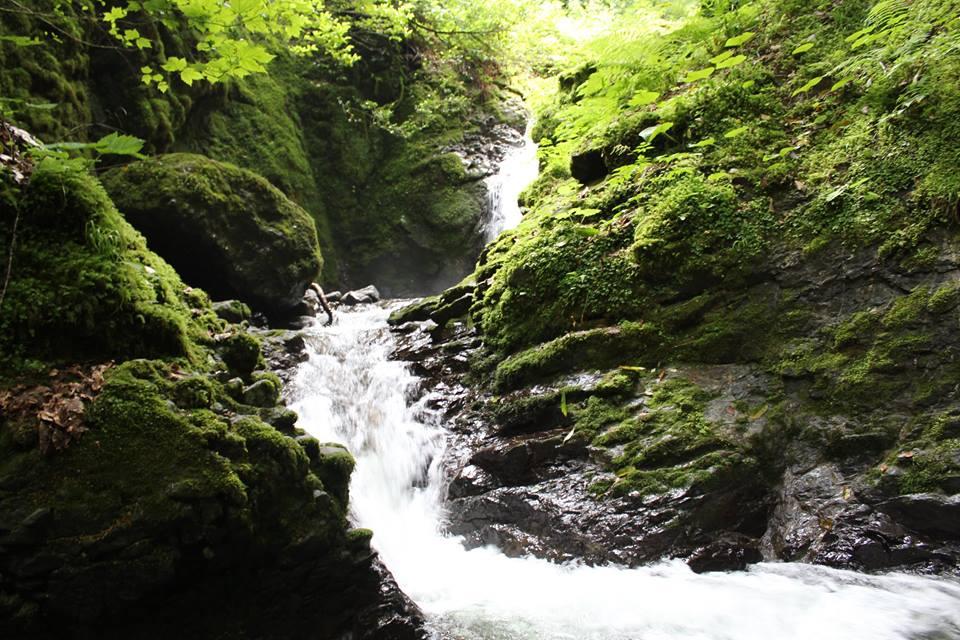 Machakhela nacionalinis parkas