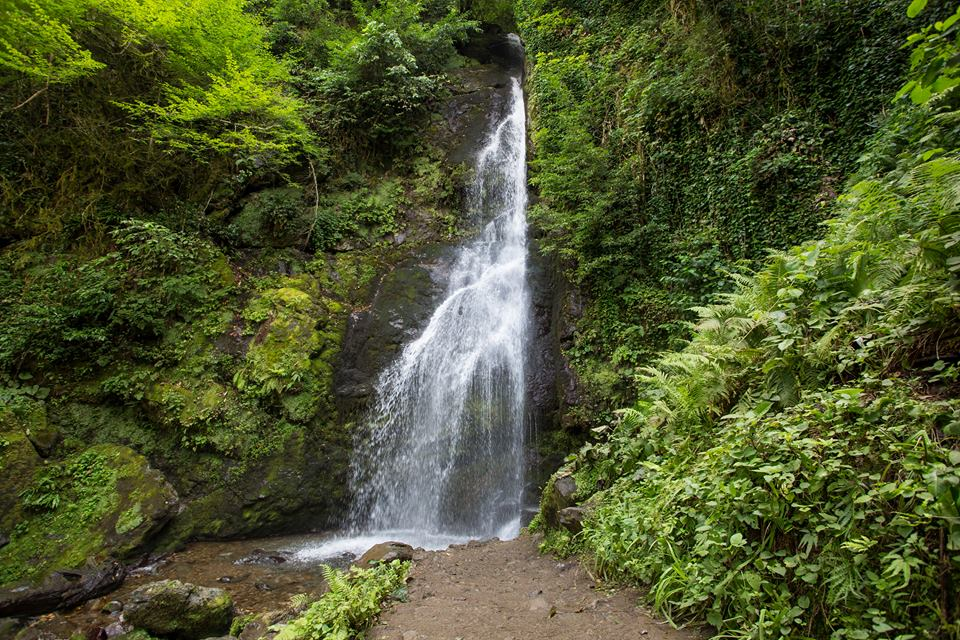 Mtirala nacionalinis parkas