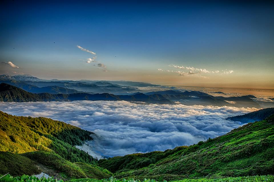 Kintrišio rezervatas © Saugomų teritorijų agentūros nuotrauka
