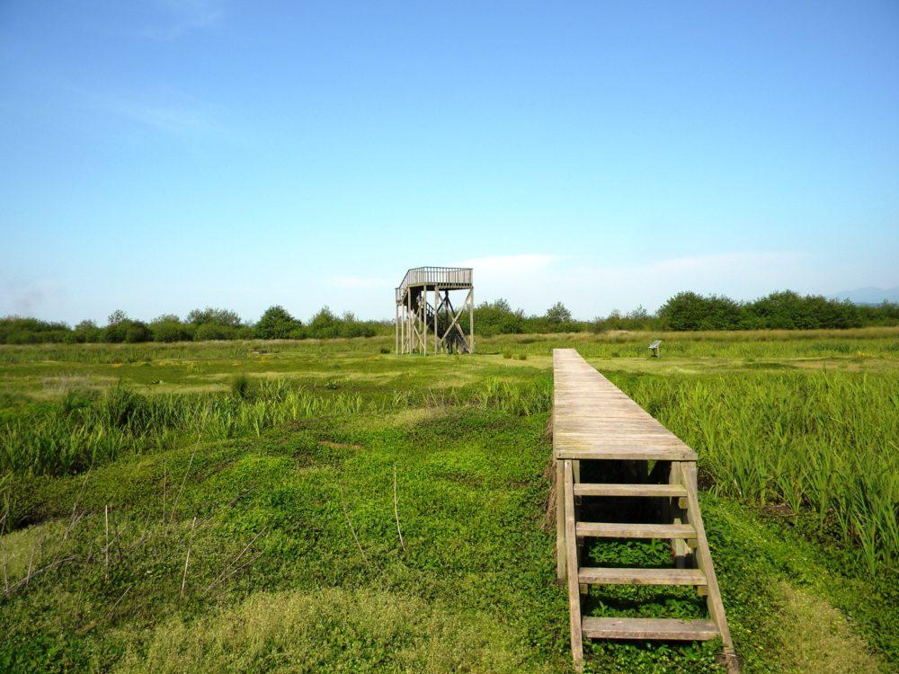 Kobulečio rezervatas