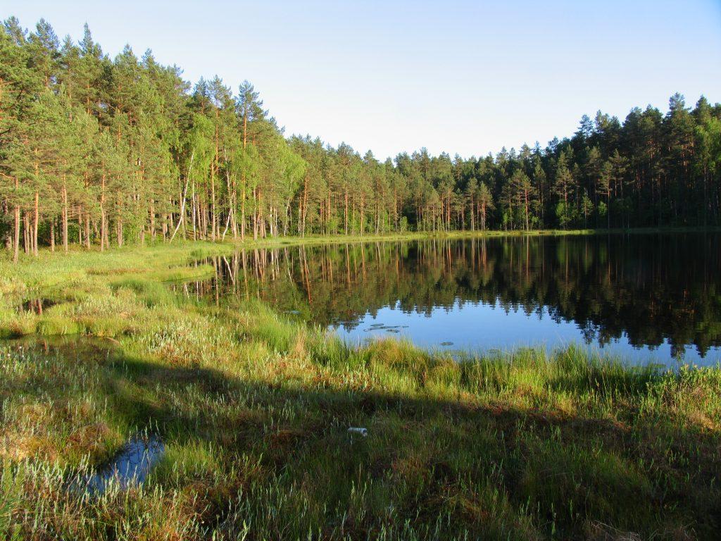 Asvejos regioninio parko ežerai (c) Jolanta Rimšaitė