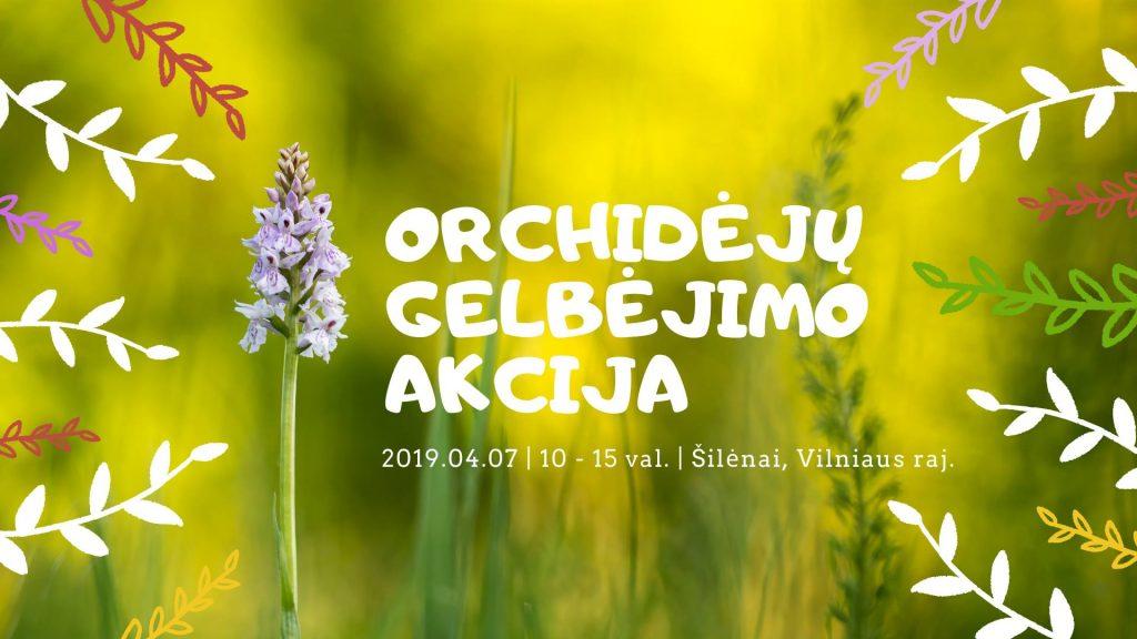 Orchidėjų gelbėjimo akcija